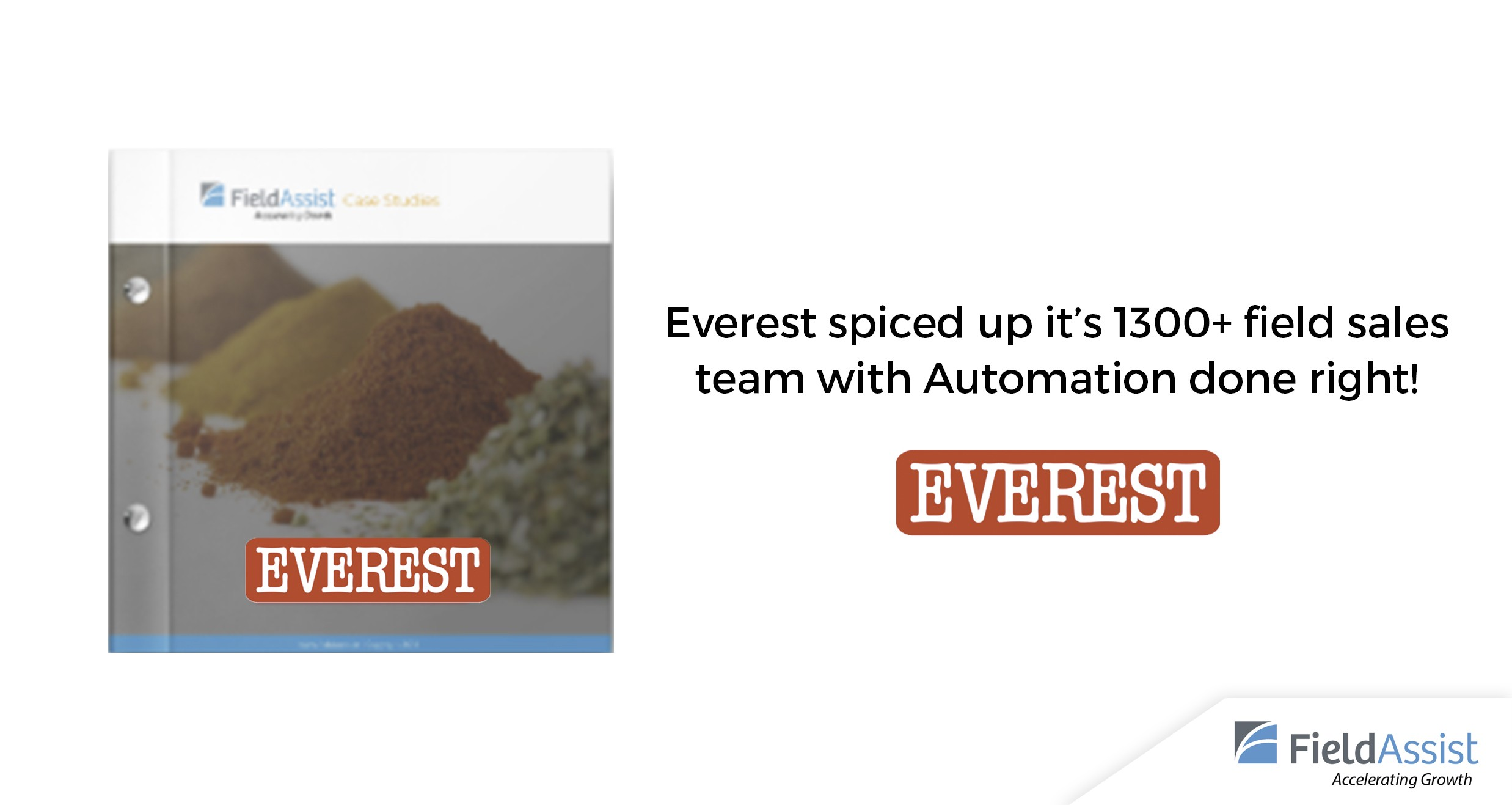 Everest - FMCG Sales Case Study